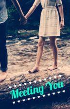 Meeting You by licia_vuu