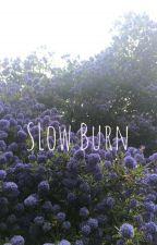 Slow Burn by AlainaGrayy