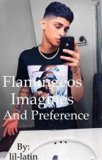 Flamingeos Imagines and Preference (BWWM) by lil-latin
