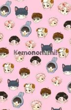 Kemonomimi!~ BTS x Reader by Meeplonaki