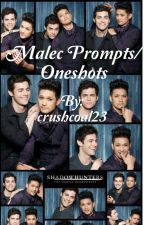 Malec Oneshots!  by crushcoal23