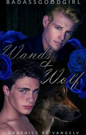 Wand and Wolf [Boy X Boy]  by BadassGoodGirl