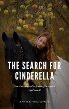 The Search for Cinderella by WaitingForEnd
