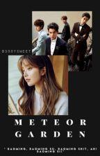 ♡ Meteor Garden ♡  by Jungkookgirl10