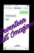 Seventeen Text Messages by missauthorC