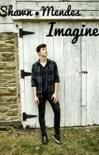 imagine with Shawn Mendes by VivenMiller