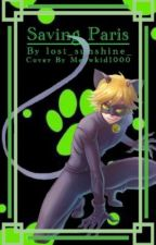 Saving Paris [Miraculous: Cat Noir x Reader] - ON HOLD by lost_sunshine_