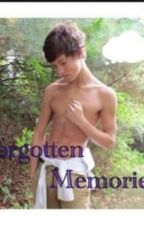 Forgotten Memories (Taylor Caniff) by ally511
