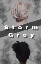 Storm Grey by Bookworm_Malfoy