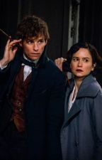 Crescendo: A Fantastic Beasts Newtina Fanfiction by Dappledleaf