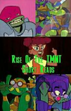 Rise Of The TMNT Short Reads by Remix-pepperweb