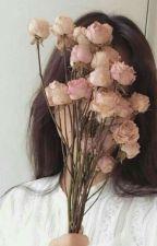 Flower Shop (k.sj) by CherieRin