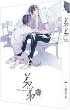 Brother (Chinese BL Novel English Translation) by geelan