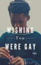 wishing You were Gay - ybnk  by shesdifficult