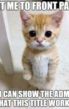 Cute And Funny Animal Pics by MMGACJKSJRSSESMM