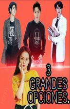 3 GRANDES OPCIONES. •JiHo• •JinSoo• •JinJi• by Hanny-San