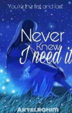 Never Knew I Need It by akyelrahim