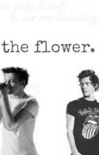 The Flower. (Larry fanfic in finnish) by fallingfromtheskies