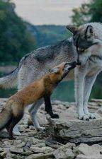 Our Little Omega Fox  by little-foxy-kit