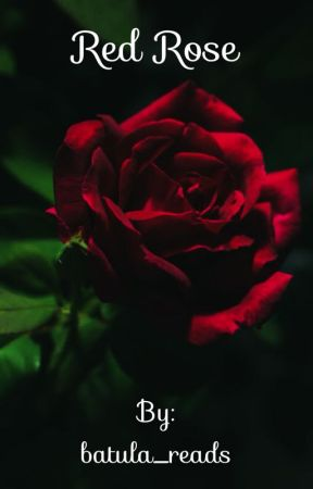 Red rose  by batula_reads