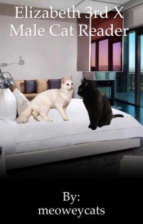 Elizabeth 3rd x male cat reader by meoweycats
