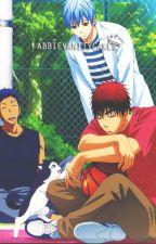 Kuroko no Basket (Various x Reader) by AbbieVanityCakes