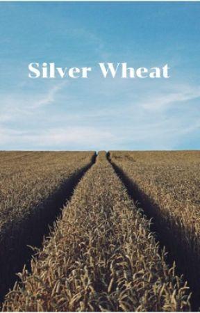 Silver Wheat by AmosAMess