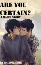 Malec story- Are you certain? by NachoZhere