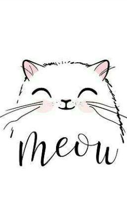 TaeJin Mèo nhỏ biết yêu