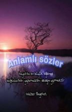 anlamlı sözler by senaaa1234568