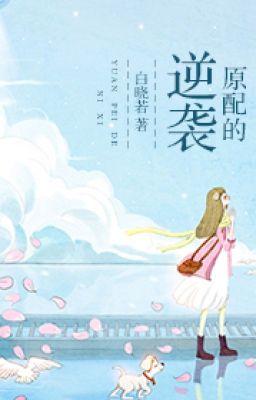 Đọc truyện [NT] Nhanh xuyên vợ cả phản công - Bạch Hiểu Như.