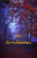 Les Gardiennes by cpernak