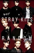 Stray Kids Random Book  by AhnSoyoung