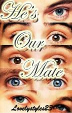 He's our Mate (Narry, Niam, Nouis, Ziall) by Lovelystyles23