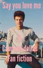 Say you love me (a Cameron Dallas fan fiction ) by BdXbelladallas