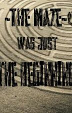 The Maze was just the beginning || THE SCORCH TRIALS by GinnyWeasley124