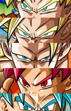 Dragon Ball Z by hackerrush