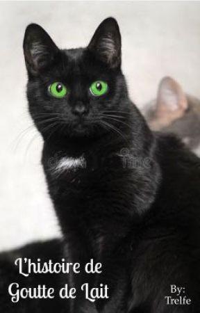 Photos de chatte humide serré