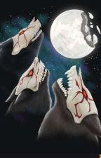The Wolf Among Hunters: (RWBYxMaleReader) by ThaNerdyGuy