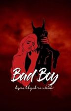 Bad Boy *A Colby Brock fanfic* (DISCONTINUED)  by colby_brockkk