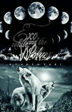 EXO and the white Wolves {PAUSIERT} by NyuuSayuri