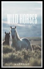 Wild Horses   justin bieber by marvelhemmings96