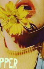 KIDNAPPER ( Shawn Mendes) by yoshawnie