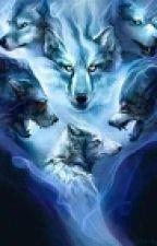 A Supernatural Rp Book by FallsintheFall