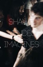 Shawn Mendes Imagines by _perfectly_wrong