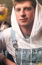 inseparable - A Matt King x Reader story by bee_the_writer_