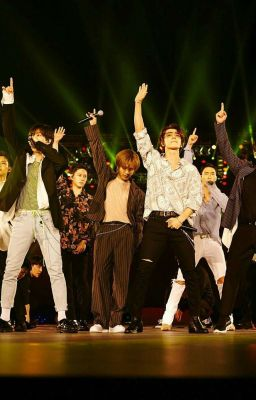 [ Super Junior FanFic ] - Untill The Day We...