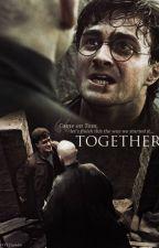 Voldemort x Harry Potter by Thiennguyen3112