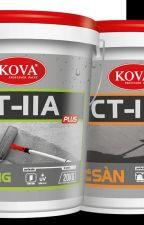 Chất chống thấm pha xi măng ct11a giá cạnh tranh by Hopthanhphat