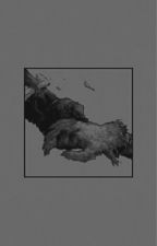 The All Seer// My Hero Academia X Reader  by himikomadness